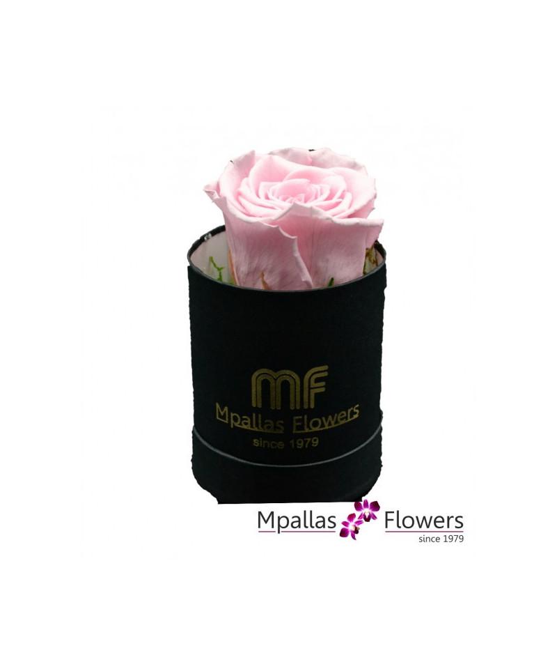 Blue Box Flowers
