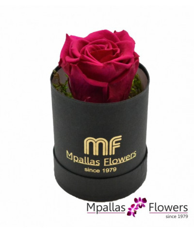Blue Box Flowers
